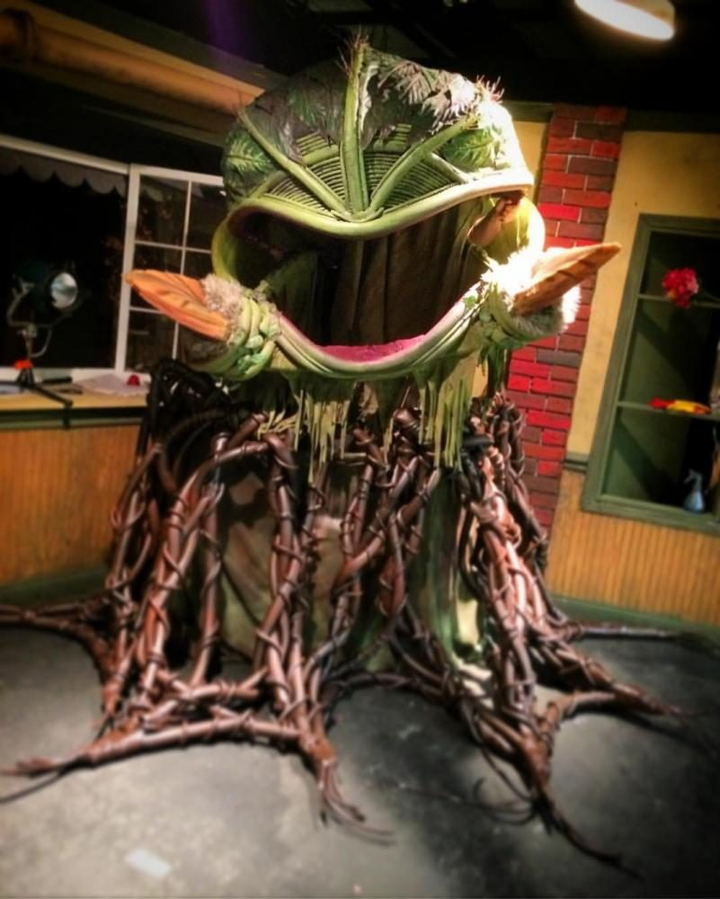The+Audrey+II+puppet%2C+voiced+by+Jared+Riddle+and+controlled+by+James+Solis%2C+is+the+man-eating+plant+that+plagues+Seymour.