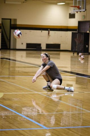 Volleyball team ready to serve in Division II