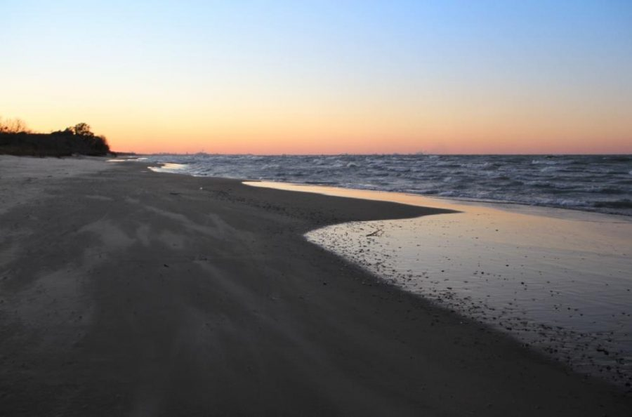 Though Indiana Dunes National Park is just minutes away from PNW, the access to nature and unparalleled views feel like you're a world away from the classroom.  The dunes offer 50 miles of hiking trails, one of the most biodiverse experiences in the national park system and the chance to spot more than 350 different species of birds that occupy it throughout the year.