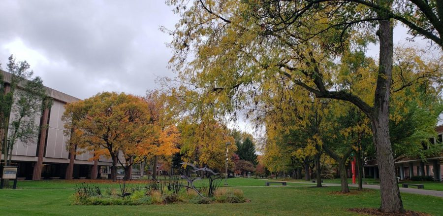 While many people look forward to fall colors, they signal a seasonal change that some students worry may bring more isolation  that complicates seasonal anxiety and depression that already poses problems for a significant number of students.