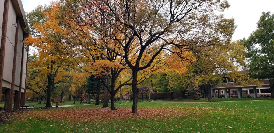 As Thanksgiving approaches the campus scenery is changing to match the season. Students wonder how holiday get-togethers are going to be different this year as they find ways to connect with friends, family and loved ones in an evironment that has imposed COVID-19 restrictions. Photo by Shannon Yardley